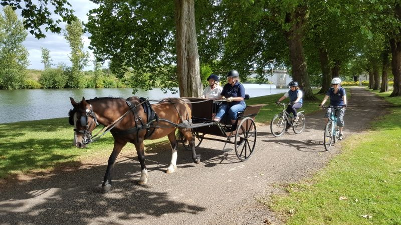 Windsor And Ascot Driving Group