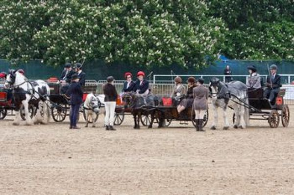 mn-Royal_Windsor_Horse_Show_2012_9603