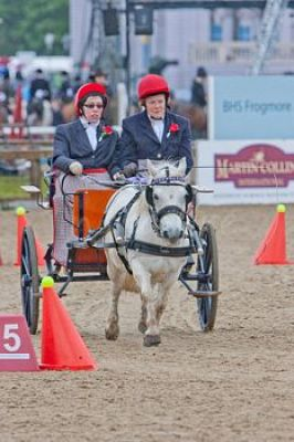 mn-Royal_Windsor_Horse_Show_2012_9640